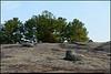 """31Dec10  bradley peak, arabia mountain.  <a href=""""http://carpelumen.smugmug.com/Photography/2009/December09/10558596_ZYY3B/1/754118663_Gmxo6/Medium"""">one year ago.</a>  f/11, 1/400s, iso 640."""