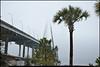 (22Dec10)<br /> <br /> arthur ravenel jr bridge, shrouded in fog, charleston, sc.<br /> <br /> f/8, 1/640s, iso 640.