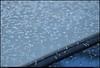 "14Dec10  morning ice crystals.  <a href=""http://carpelumen.smugmug.com/Photography/2009/December09/10558596_ZYY3B/1/742014812_jpokw/Medium"">one year ago.</a>  f/8, 1/80s, iso 200."