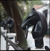 (19Dec10)<br /> <br /> horse parking, guignard street, charleston, sc.<br /> <br /> f/8, 1/20s, iso 400.