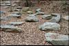 (21Dec10)<br /> <br /> rock garden, holcomb bridge park, gwinett county, georgia.<br /> <br /> f/8, 1/100s, iso 640.