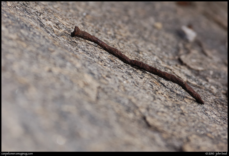 "(28Feb10)  rusted nail on granite, arabia mountain nature preserve.  <a href=""http://carpelumen.smugmug.com/Photography/2009/February09/7238254_MzkRU/1/482468889_kwyVi/Medium"">one year ago.</a>  f/6.3, 1/1600s, iso 640."