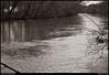 "23Feb10  chattahoochee river.  <a href=""http://carpelumen.smugmug.com/Photography/2009/February09/7238254_MzkRU/1/479899467_Egvab/Medium"">one year ago.</a>  f/4.5, 1/320s, iso 200."