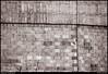 "(29Jul10)  brickwork.  <a href=""http://carpelumen.smugmug.com/Photography/2009/July09/8770350_aJEzR/1/606498576_5DV2R/Medium"">one year ago.</a>  f/6.3, 1/400s, iso 1250."