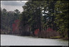 """(21Mar10)  alexander lake, panola mountain state park, georgia.  referenced yesterday, this was one of a few of varying zoom.  <a href=""""http://carpelumen.smugmug.com/Photography/2009/March09/7477799_WHuqw/1/496060774_x85Tn/Medium"""">one year ago.</a>  f/11, 1/500s, iso 400."""