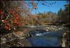 """(15Nov10)  sweetwater creek state park, georgia.  <a href=""""http://carpelumen.smugmug.com/Photography/2009/November09/10158540_QLM7i/1/714200359_aPPGM/Medium"""">one year ago.</a>  f/11, 1/200s, iso 200."""
