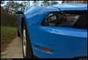 25Nov10<br /> <br /> black and blue pony.<br /> <br /> f/7.1, 1/160s, iso 400.