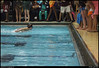 (10Nov10)<br /> <br /> butterfly and encouragement.<br /> <br /> teammates line the end of the lane and shout encouragement as the swimmer emerges.<br /> <br /> f/6.3, 1/200s, iso 1600.