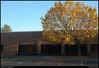 "(12Nov10)  autumn leaves, available office space.  <a href=""http://carpelumen.smugmug.com/Photography/2009/November09/10158540_QLM7i/1/714192213_KYk5y/Medium"">one year ago.</a>  f/11, 1/125s, iso 400."