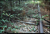 "(18Oct10)  abandoned tracks.  <a href=""http://carpelumen.smugmug.com/Photography/2009/October09/9832432_QGQQM/1/684785461_h6Wmw/Medium"">one year ago.</a>  f/7.1, 1/20s, iso 1250."