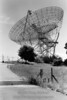 Stanford University radiotelescope dish