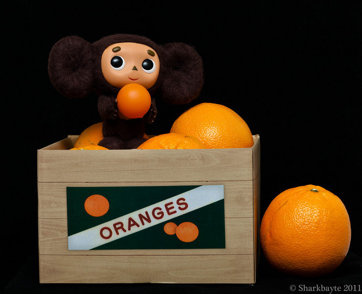 March 25, 2011-This is Cheburashka. The character comes from Eduard Uspensky's story about a mysterious creature who gets accidentally transported in a box of oranges to Russia. More on this story as the characters are introduced. He arrived yesterday along with his friend Gena or Gene from the stories and another character that I will tie in with him and Treeson eventually. I fell in love with this guy a while back but never could find him online to purchase. Finally found him as well as the old stories and cartoons about him. These stories are from Russia in the late sixty's and seventy's. (85:365 @sharkbayte)