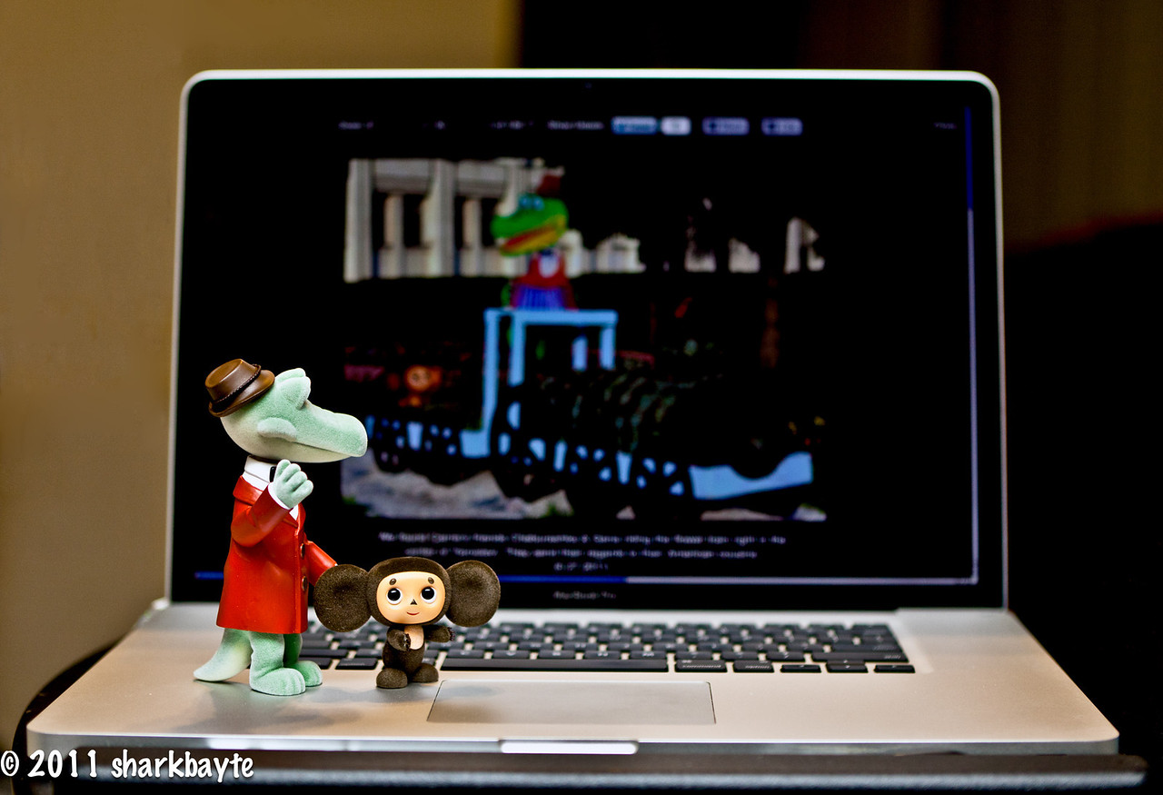 "June 28, 2011-Seeing double? As I was getting some coffee, I heard Cheburashka yelling, ""Gena come quick it's us, it's us, Gena!"" Gena got to the computer first and thought he was seeing double, then he read the caption and told Cheburashka it was their cousins in Russia. Susan and Rustem had photographed them and posted their picture for us to see. Needless to say all of the gang gathered at that point and then I was booted off the computer until they all had their turn playing. Oy vey! what a day! (Day 179:365 @sharkbayte) Sorry I didn't do RUSU's picture justice, I was having a hard time with the screen not showing up, then it was too light...I was getting frustrated and had to return to bed. I know that's not an excuse but I will revisit this type of shot again when I have more time and can work it out better.<br /> <br /> Thanks for commenting on my photos."