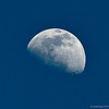 February 13, 2011- The Waxing Gibbous (nine day old) Moon. I finally captured it during the day. I have such a hard time getting a day time shot of the moon. Wasn't sure what I was doing wrong, it was always too faint, not a lot of details, just a bad shot. But this time, (2/12/11) I finally got it! Day 44 #365Project @sharkbayte