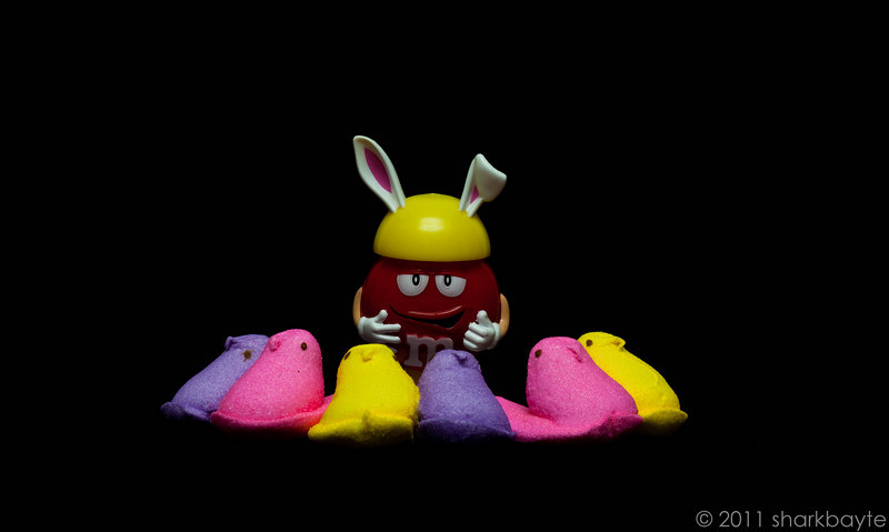 "April 21, 2011 – Red and the Peeps. Red decided that he was going to do a show with the Peeps; titled ""Red and the Peepers'"". (Oh, so creative and original…) Anywho, this is it, the one and only act. He sings and they are his backup singers. It's very enjoyable if you are tone deaf! (Day 111:365 @sharkbayte)<br /> <br /> Wow! Thank you very much for all the support and comments yesterday, much appreciated!"