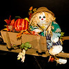 What do Scarecrows do after Midnight? (11/14/2011)<br /> Late one night I was having difficulties sleeping and thought I heard a noise. I caught this little guy partying with my liquor! Wide awake now, I did the only obvious thing and joined him!<br /> Hope your day goes great.<br /> -Bob