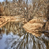 In an Escher mode today (1/27/11) while testing Canon's EF 70-300mm f/4-5.6L IS USM lens at Barr Lake.