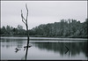 """22Apr11  private lake at arabia mountain.  <a href=""""http://carpelumen.smugmug.com/Photography/2010/April10/11696745_oPfad/1/845040005_9jZ4y/Medium"""">one year ago.</a>  f/22, 1/160s, iso 800."""