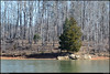 "(16Feb11)  alone at the edge of the lake.  <a href=""http://carpelumen.smugmug.com/Photography/2010/February10/11223017_NXk2m/1/790429823_nZepw/Medium"">one year ago.</a>  f/11, 1/320s, iso 640."