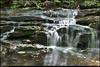 """(25Sep11)  laurel creek cascades, davidson-arabia mountain nature preserve.  <a href=""""http://carpelumen.smugmug.com/Photography/2010/September10/13579544_LrrBZM/1/1021729550_cQ4Cc/Medium"""">one year ago.</a>  f/22, 1.3s, iso 100."""
