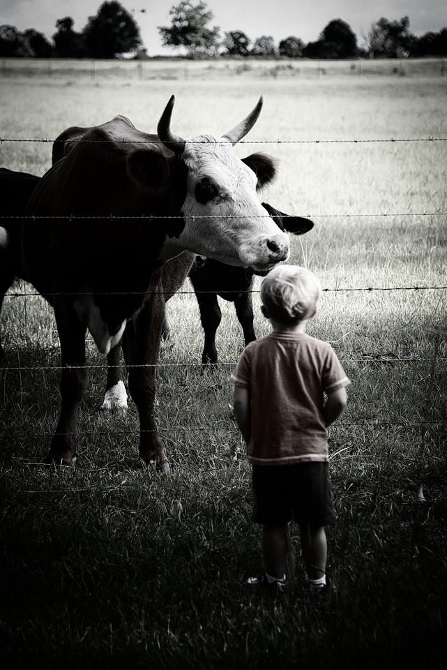 Hey Kid, Eat mor chikin