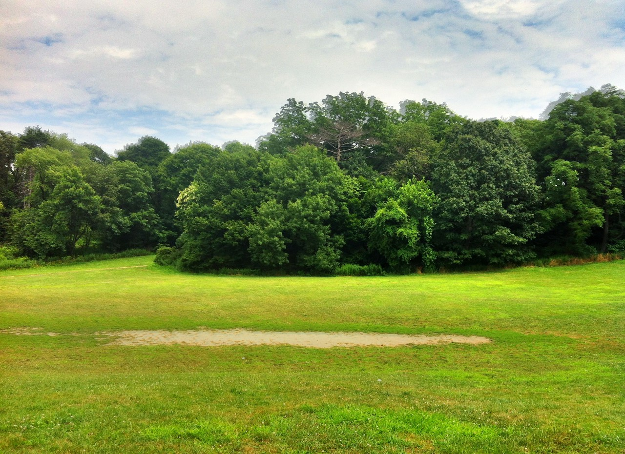 July 14, 2012<br /> <br /> Prospect Park using iPhone Pro HDR app.<br /> <br /> Took my new bike for a spin in the park for the first time. Rides great. Trek FX 7.3.