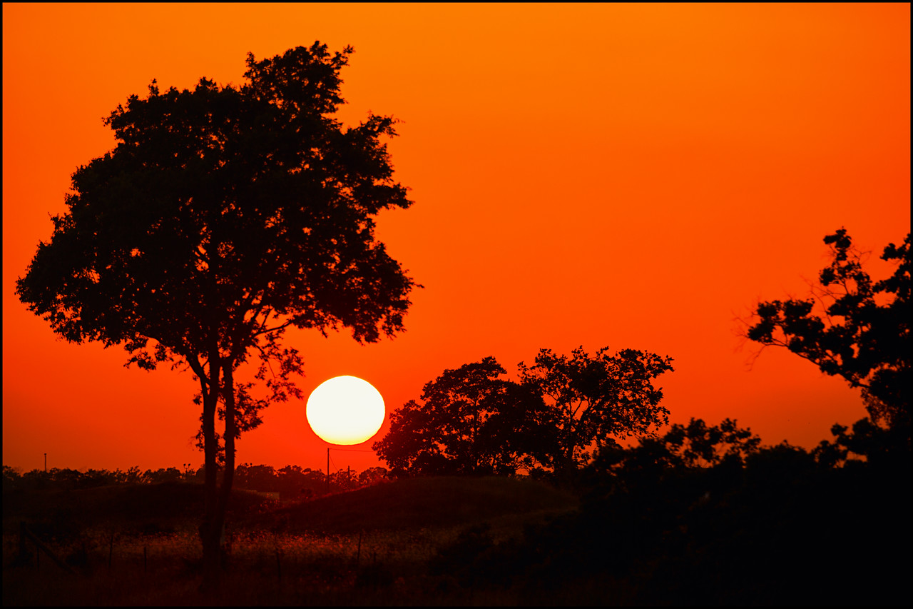 Just down the road from our house, the sun sets between  some trees north of Interstate 10 west of Houston.