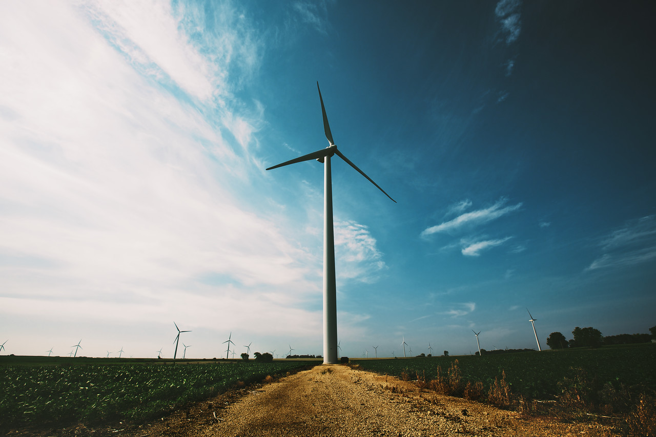 Modern and beautiful. Hundreds of these huge wind turbines are scattered along the highways in the northern states.