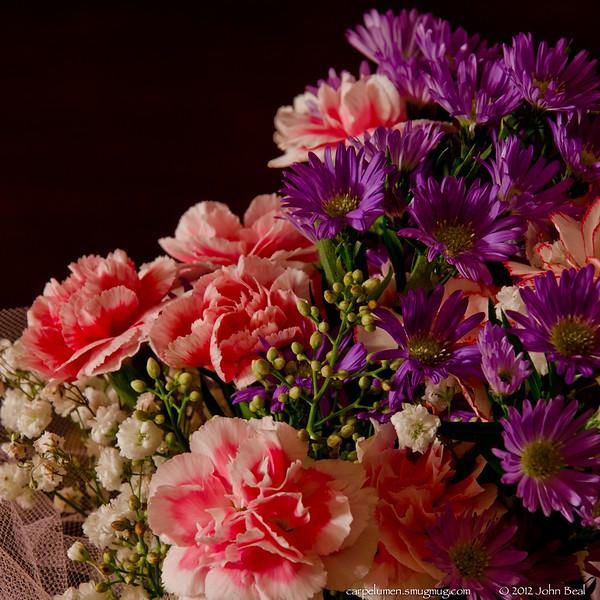 "22Apr12  a bouquet for the young actress.  <a href=""http://carpelumen.smugmug.com/Photography/2011/April11/16045181_QjLmWm/1/1261877058_fZ2LZQn/Medium"">one year ago.</a>  f/11, 2.5s, iso 400."