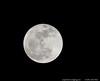 "6Apr12  the occasional, obligatory moon shot.  <a href=""http://carpelumen.smugmug.com/Photography/2011/April11/16045181_QjLmWm/1/1242896931_xrGmS/Medium"">one year ago.</a>  f/8, 1/1000s, iso 800."