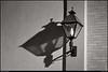 "(28Jan12)  nighttime shadows.  <a href=""http://carpelumen.smugmug.com/Photography/2011/January11/15328979_G5bKSC/1/1170718300_TxVwP/Medium"">one year ago.</a>  f/9, 1/5s, iso 1600."