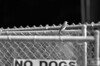 "(1Jul12)  no dogs.  <a href=""http://carpelumen.smugmug.com/Photography/2011/July11/17760312_G3cPzX/1/1363742030_phsVhwt/Medium"">one year ago</a> georgia opened its newest state park, <a href=""http://www.gastateparks.org/ChattahoocheeBend"">chattahoochee bend sp.</a>  f/5.6, 1/1000s, iso 800."