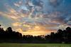 "(14Sep12)  morning glory.  <a href=""http://carpelumen.smugmug.com/Photography/2011/September11/18807220_dgrDff#!i=1479440927&k=VmnRN96"">one year ago.</a>  f/8, 1/200s, iso 640."