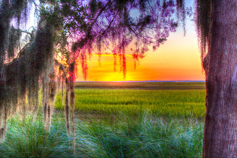 Marsh Sunset front