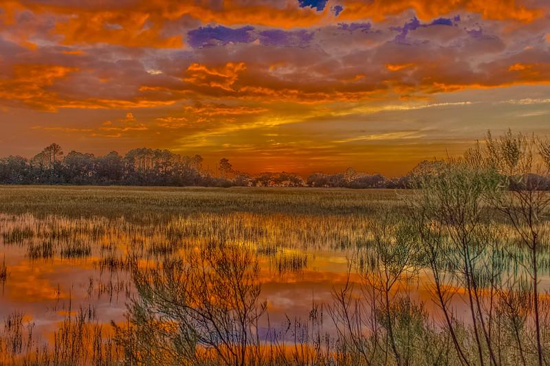 Bike Path Swamp Sunset