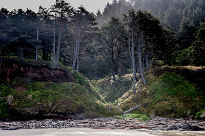 Taken on the Oregon Coast at the Wonders of the Sea 2012. Join us for more Wonders of the Sea this June.  http://www.kerbercustom.com/discoverthelight/workshop/Wonders2014.asp