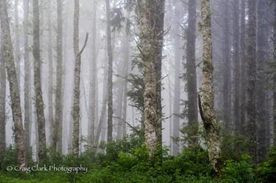 Taken on the Oregon Coast at the Wonders of the Sea 2012. Join us for more Wonders of the Sea this June. http://www.kerbercustom.com/discoverthelight/workshop/Wonders2014.asp