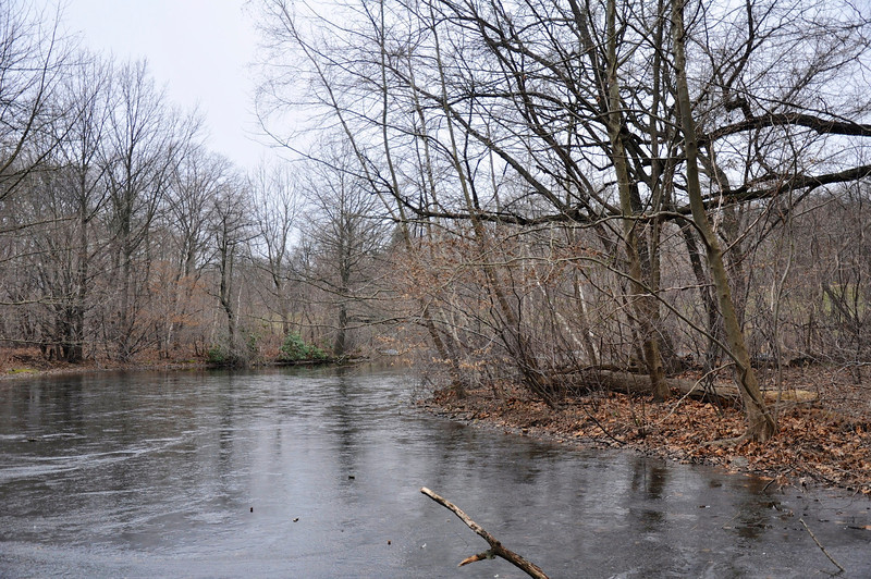 Taken on 1/21/2013.<br /> <br /> Deep in the Adirondacks in upstate New York or deep in Prospect Park, Brooklyn?