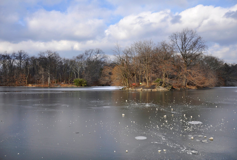 Feb. 3, 2013<br /> <br /> Central Park, Sunday afternoon.