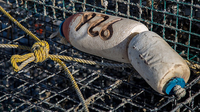Trap Buoys, Shell Pile, New Jersey