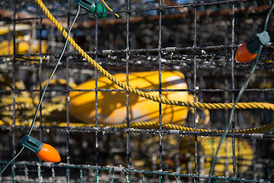 Crab traps, Shell Pile, New Jersey