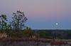 "(27Jan13)  moonrise, arabia mountain, georgia.  <a href=""http://carpelumen.smugmug.com/Photography/2012/January12/21030332_ZD3HhG#!i=1688857323&k=ZtV9pVk"">one year ago.</a>  f/11, 1/3s, iso 100."