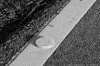 "(9Jul13)  warning track.  <a href=""http://carpelumen.smugmug.com/Photography/2012/July12/23903237_fFMkTx#!i=1961188325&k=ZJLmFcR"">one year ago.</a>  f/11, 1/400s, iso 400."
