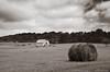 8Jun13<br /> <br /> harvesting hay at vaughter's farm.<br /> <br /> f/11, 1/250s, iso 320.