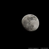 22May13<br /> <br /> a spring moonrise.<br /> <br /> f/8, 1/1000s, iso 800.