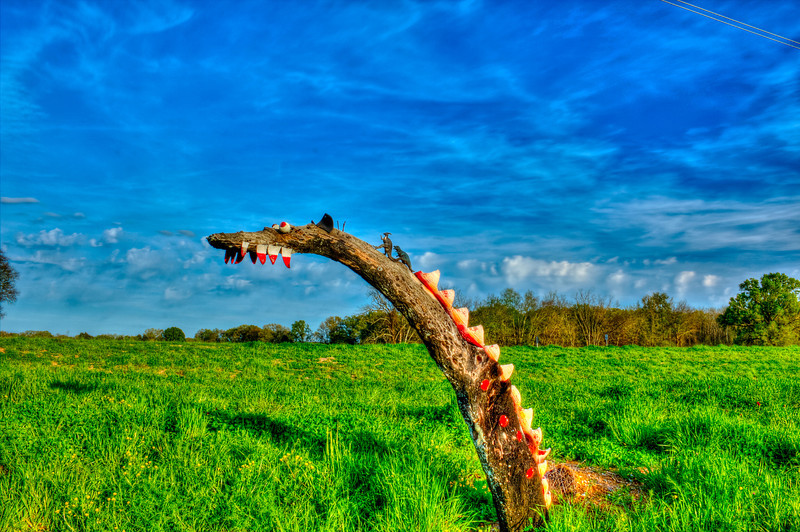 Mississippi Loch Ness. This monster comes up out of the ground when farmers plow their fields. This is a bodock tree after a pile of logs were burned around it. The Bodock tree is used for fence posts and tool handles very durable. The owner and his grandchildren cut up an old tire in triangular shape and put on the top of the trunk (like the back) and at top on the bottom for teeth and some eyes and then some dinosaurs on it's back to make a monster. It is about six feet high and barely seen from the road, took me 3 tries to find but was right out in the open. The sun was setting at my back that is what brought out the colors.