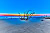 Sunrise Beach Tree