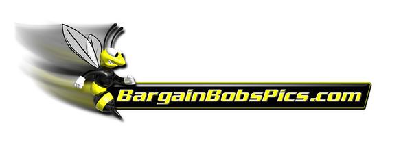 bobBaggettLogoWatermark1