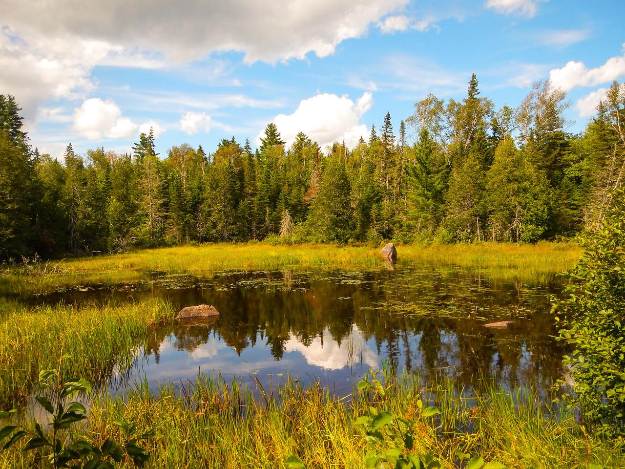 Bigelow Trail Pond