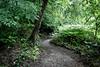 Beechwood Park Trail